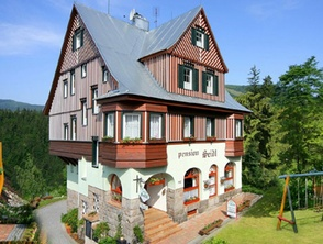 Mountain pension SEIDL,